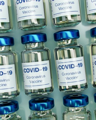 COVID Vaccine can worsen disease; mainstream study; not on the evening news