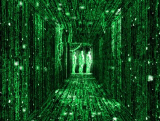 The individual vs. the collective in the Matrix