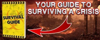 Your Guide to Surviving A Crisis