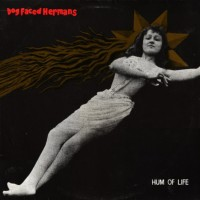 Dog Faced Hermans - Hum of Life
