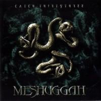 Meshuggah - Catch 33