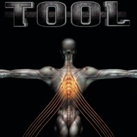 Tool - Salival