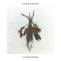 Torn Shore - Lifeburner