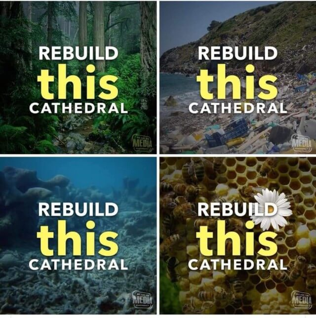Rebuild this cathedral